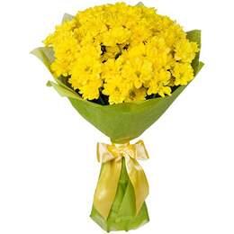 Цветы сарапул купить купить тюльпаны оптом симферополь